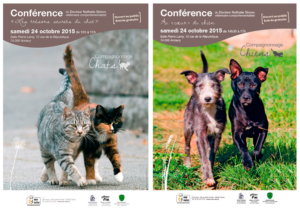 conf-chiens-chats